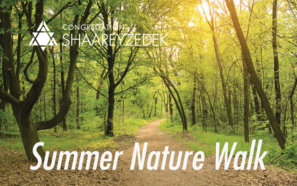 summer nature walk-20210609-185236.jpg